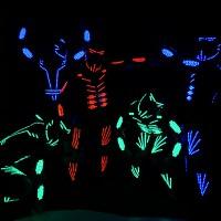 LED Show Dance der Superlative für Veranstaltungen.