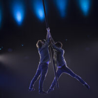 Flying Pole Show